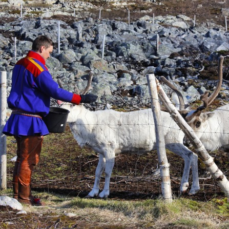 Samische Kultur, Copyright: insidenorway