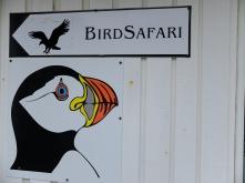 Ausflug Vogelbeobachtung, Copyright: Helen Gödde